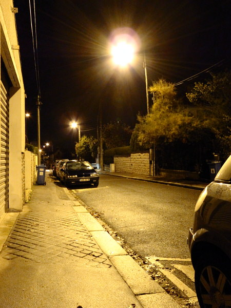 20091105-IMG_0339_dpp.JPG