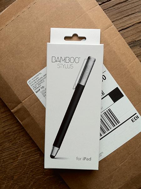 20110621 IMG 2561 bamboo