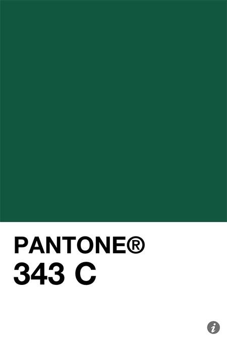 201107011 IMG 2586 pantone